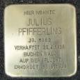 Julius Pfifferling: Halle/Saale