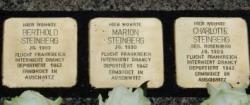 Steinberg - Edited (1)