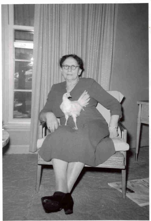 Oma Dina Samenfeld